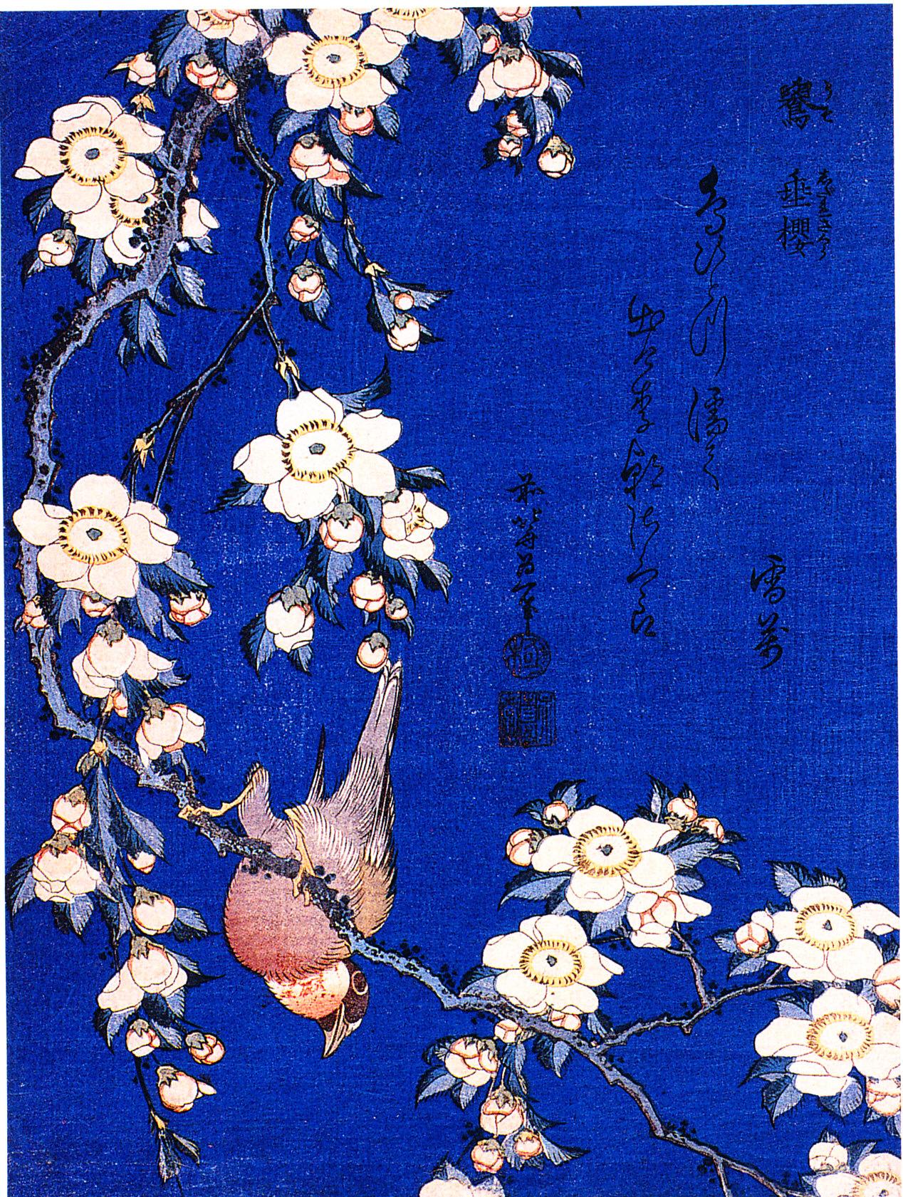 Hokusai, il cardellino e il ciliegio piangente. » A ...