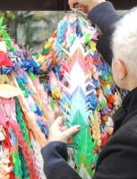 Deponendo le gru a Hiroshima. Marzo 2013.