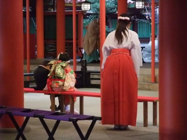 Shichigosan all'Ikuta jinja di Kobe. 15 Novembre 2015.