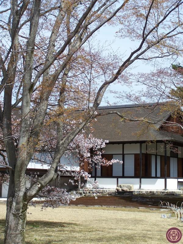 Katsura Rikyū in una dolce primavera. Kyōto, 1° aprile 2013.